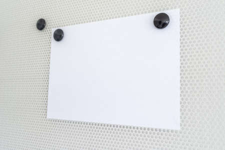 Blank piece of white paper on a magnetic board fixed with two round black magnets. With copy space. Stockfoto