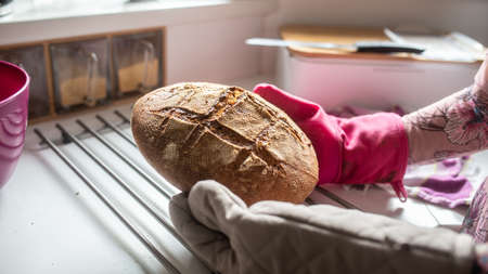 Closeup view of a woman wearing pink and grey kitchen mittens holding a hot freshly baked home made bread.