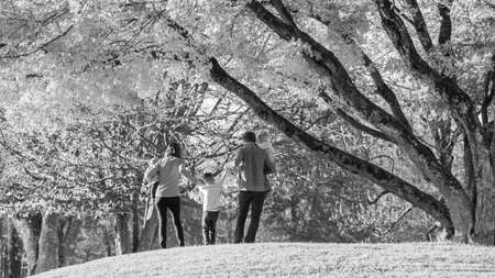 Black and white image of family of five enjoying time together in a park, parents lifting the oldest child holding his hands.