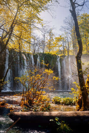 Waterfalls and trees of beautiful Plitvicka lakes lit by sun rays. Archivio Fotografico - 126277770
