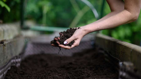 Woman working on her garden in raised garden bed holding handfull of fertile soil.
