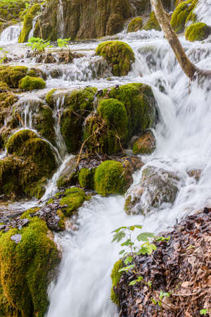 Beautiful nature with water falling down the slope over the mossy rocks in Plitvicka lakes national park. Archivio Fotografico - 126278810