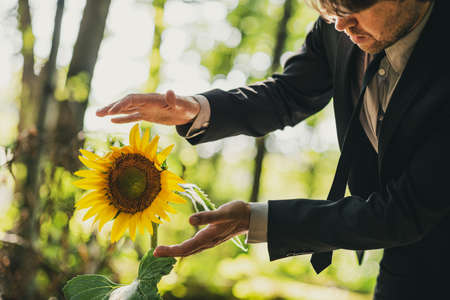 Young man in business suit standing in forest holding his hands around beautiful blooming sunflower in protective gesture.