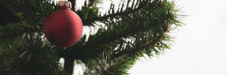 Wide view image of red christmas bauble hanging on green branch of holiday tree. Stok Fotoğraf - 128872987