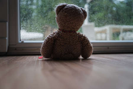 View from behind of a teddy bear toy sitting by a large window looking out in a conceptual image.