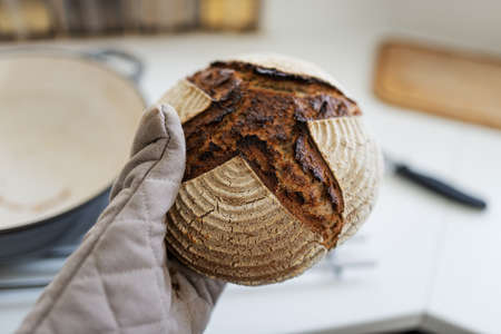 Hand in protecting glove holding freshly baked hot home made bread.