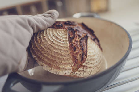 Closeup view of hand in kitchen mittens taking freshly baked hot bread out of clay pot on kitchen counter.