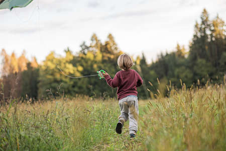 View from behind of a little boy running through beautiful autumn meadow flying a kite.