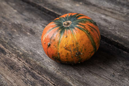 One orange squash pumpkin placed on rustic wooden boards. Imagens