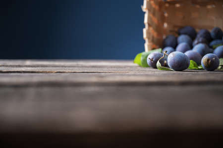 Low angle view of home grown organic plums scattered out of a wicker basket on rustic wooden boards. With copy space to the left side of an image.
