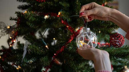Closeup of female hands hanging shiny transparent and white holiday bauble on decorated christmas tree.