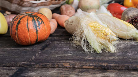 Still life of colorful autumn vegetables such as squash, corn, potatoes on rustic wooden boards.