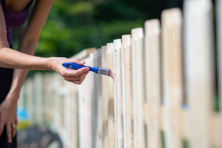 Woman painting a new wooden fence in backyard with transparent protective varnish. Standard-Bild