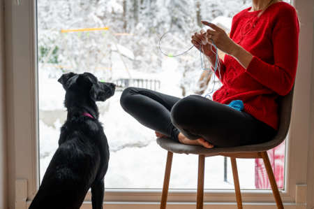 Beautiful black dog sitting next to her owner knitting with cotton thread by the window with snowy winter nature outside.