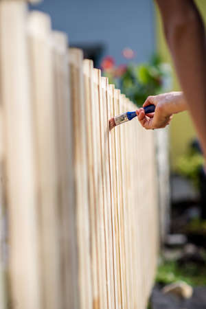 Applying protective transparent varnish with a paintbrush on a new wooden fence outside in the backyard. Standard-Bild