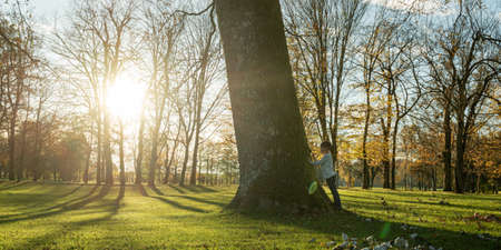 Toddler boy standing by a majestic tree trunk looking at it with awe in a park lit by the setting sun. Standard-Bild