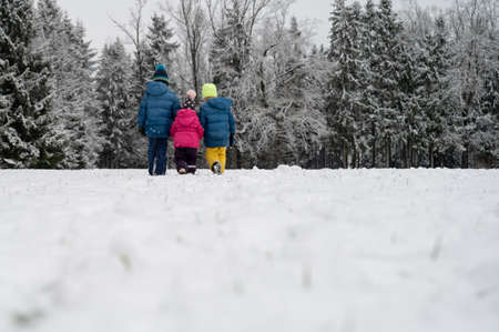 View from behind of three kids, siblings, in winter suits holding hands walking in beautiful snow covered nature.