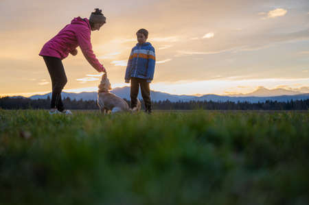 Young woman obedience training her cute small dog together with her son outside in a beautiful meadow at sunset.