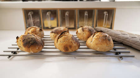 Six freshly baked sourdough bread buns with a golden crust cooling off on a rake on kitchen counter.