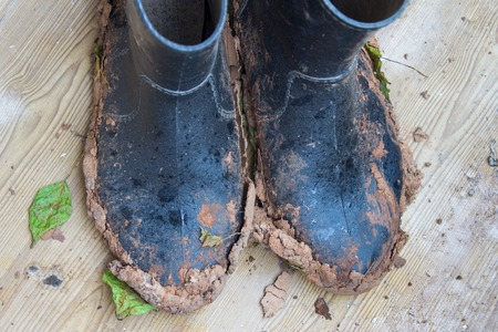 Dirty rubber boots after work in the garden in rainy weather. Top View. Stock Photo