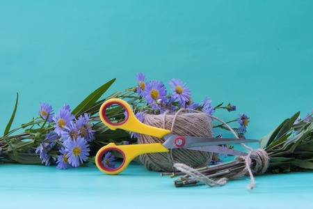 Composition with a bouquet of flowers of violet asters and scissors on a neutral green background.