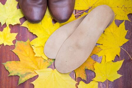 Brown shoes with orthopedic insoles. Background of yellow and orange maple leaves. Top view.