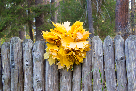 Wreath of yellow maple leaves on the wooden fence. Natural background. Autumn Concept.