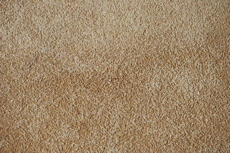 flesh colour: Brown chamois texture, fluffy and soft suede