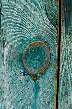 longitudinal: texture sawing logs on the longitudinal section showing the cut along the growth rings. The cut wood with cracks, painted in green and artistically crafted Stock Photo