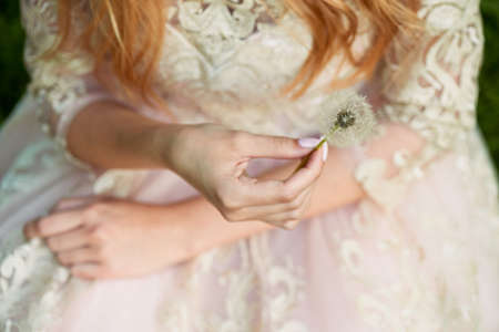 pleasantness: Beautiful hands girls holding the dandelions. On the background of the lace dresses