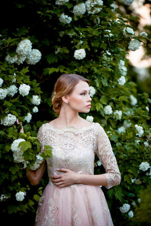 pleasantness: Pretty young tender blonde in a lace cream dress against the background of a blooming garden