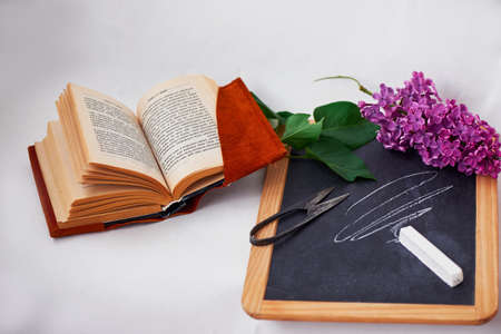 Wooden slate with chalk and old vintage scissors and the book with suede cover. Lilac purple