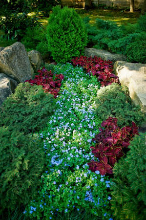 A garden with ground covers and conifers, decorated with stones and boulders Stock Photo