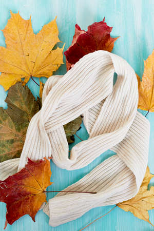 White knitted wool scarf on turquoise background in the autumn leaves. The atmosphere of warmth and comfort Stock Photo