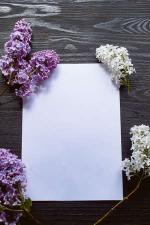 A sheet of paper on a black wooden background and twigs of lilac. Plans, romantic letter.