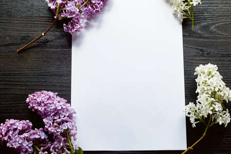 A sheet of paper on a black wooden background and twigs of lilac. Plans, romantic letter. Foto de archivo - 123523128