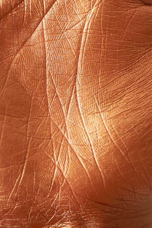 The texture of human skin, painted with gold paint. The palm with the lines of life. Closely Banco de Imagens
