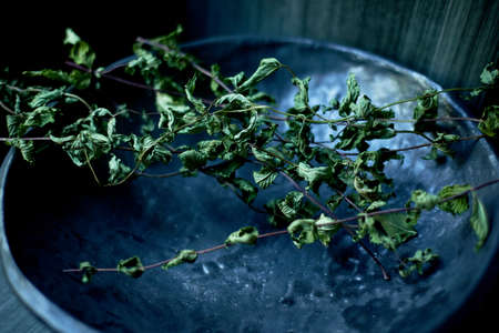A sprig of dried mint on a ceramic plate. Preparations for the winter. Dried herb.