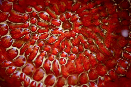 Ceramics , the texture of the pomegranate. Red.
