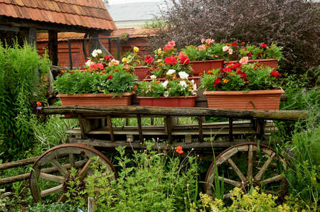 The decoration and decor of the garden. A wooden old wagon and pots of flowers. Floristics.