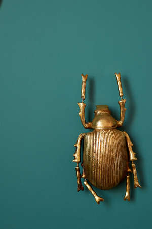 A golden beetle against a green wall. Interior design. Decoration of the walls.