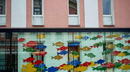 Showcase with colorful fish. Fish shop, glass window decoration. Standard-Bild