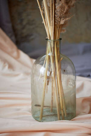 Stems of dry flowers in a large transparent bottle on light fabric. Still life for the artist Standard-Bild