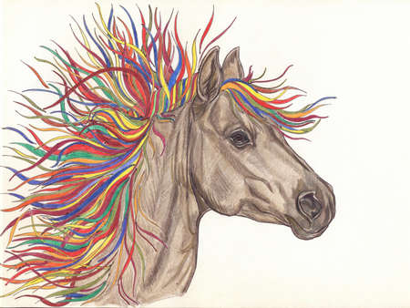 Beautiful Horse with bright colorful mane.Drawning by pencil .Close-up