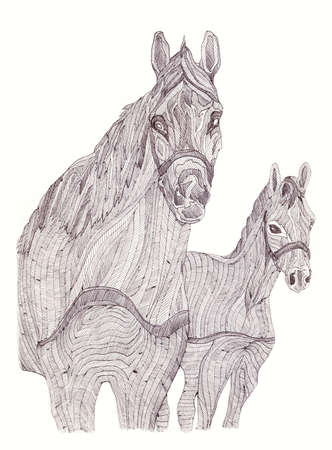 mare: Illustration of mare and foal. Black and white style. Hand-drawn.