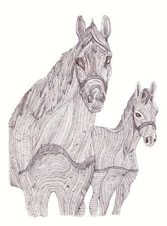 yegua: Ilustración de la yegua y el potro. estilo blanco y negro. Dibujado a mano. Foto de archivo