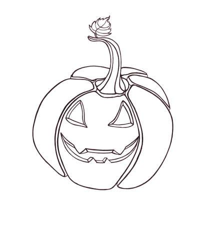 fruit stalk: Pumpkin vegetable. drawn black pen. Artwork