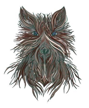 prey: Head wolf wild beast of prey. Stock Photo