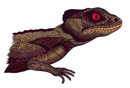 lagartija: Perfil del lagarto. Dibujado a mano. Foto de archivo