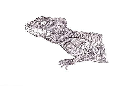 tribal dragon: Profile Lizard. Hand drawn.Graphic style